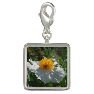 Coulter's Matilija Poppy Charms