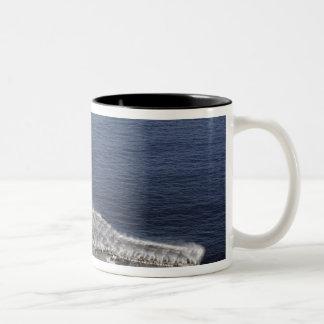 Countermeasure wash down sprinklers coffee mug