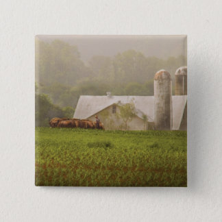 Country - Amish Farming Button