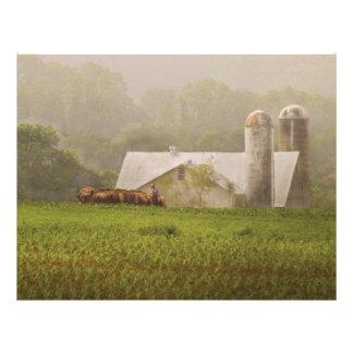 Country - Amish Farming Customized Letterhead