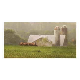 Country - Amish Farming Photo Card