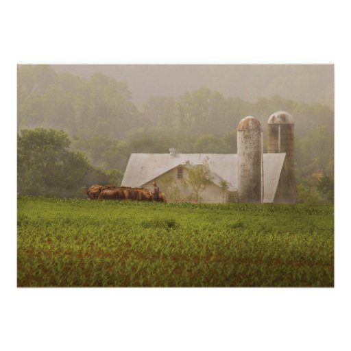 Country - Amish Farming Poster