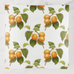 Country Apricot Fruit Pattern Trinket Tray Gift