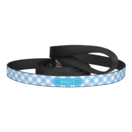 Country Baby Blue Gingham Custom Name Pet Lead