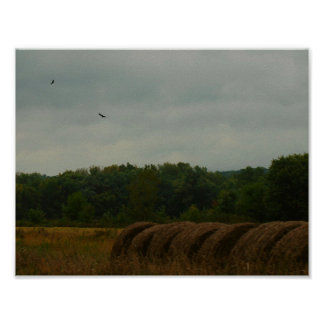 Country Bales Poster