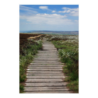 Country Boardwalk Pathway Poster