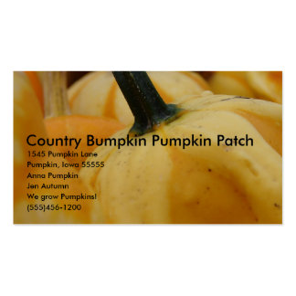 Country Bumpkin Pumpkin Patch, 15... Double-Sided Standard Business Cards (Pack Of 100)