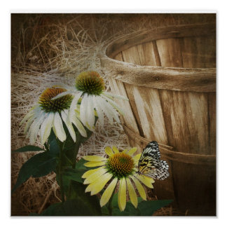 Country Butterfly Poster