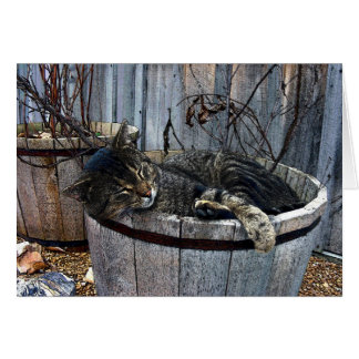Country Cat Greeting Card