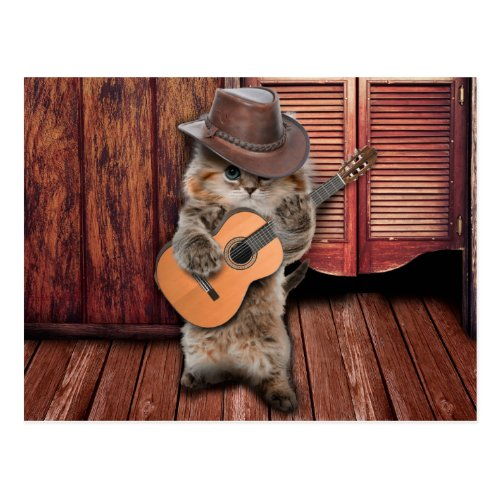 Country Cat _ guitarist Cat _ funny cat Postcard