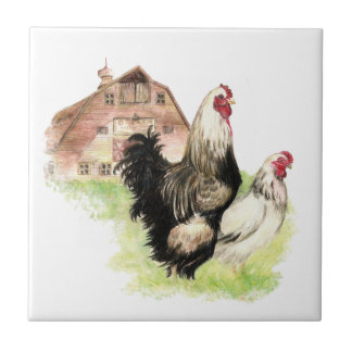 Country Chicken & Rooster Barn, Farm Scene Small Square Tile