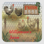 Country Chickens Farm Fresh Eggs Name Square Sticker