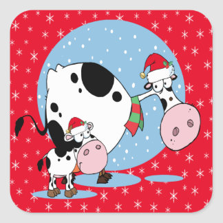Country Christmas Cows With Santa Hats Square Sticker