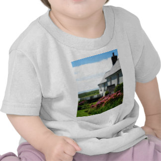 Country Cottage in Wales T-shirt