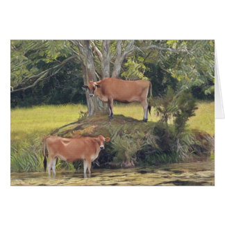 Country Cows Staying Cool Card