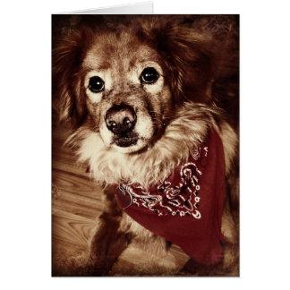 Country Dog Wearing a Bandanna Greeting Card