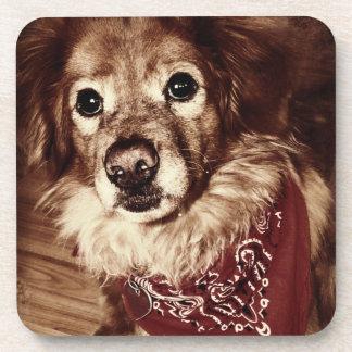 Country Dog Wearing a Bandanna Drink Coaster