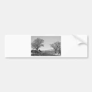 Country Drive Longs Peak View BW Car Bumper Sticker
