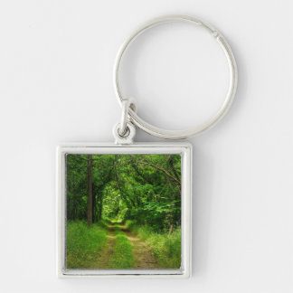 Country Driveway Keychain