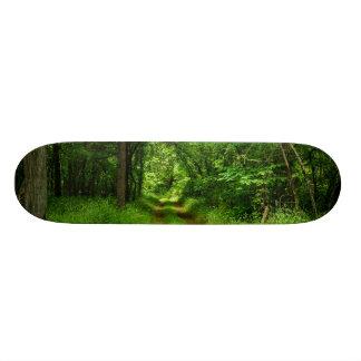 Country Driveway Skateboard
