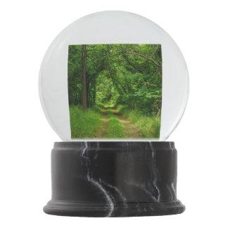 Country Driveway Snow Globe