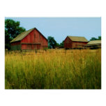 Country Fields Print
