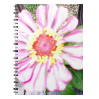 Country Flower Keepsake Collection Notebook