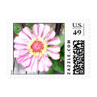 """""""Country Flower Keepsake Collection"""" Postage"""