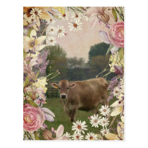 Country Flowers Jersey Cow Postcard