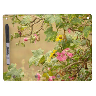 Country Garden Dry Erase Board