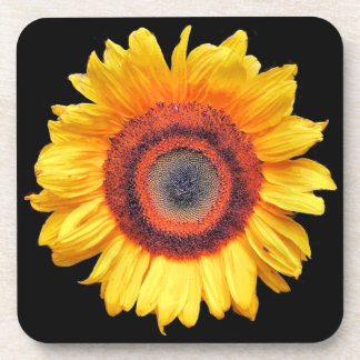 COUNTRY GARDEN FLOWERS DRINK COASTERS