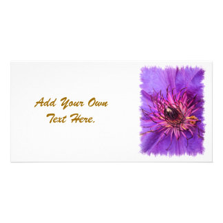 COUNTRY GARDEN FLOWERS PHOTO CARD