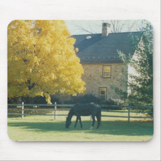 Country Horse - mousepad