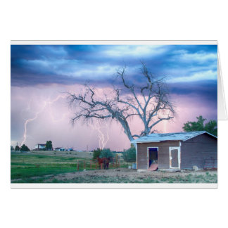 Country Horses Riders On The Storm Greeting Cards
