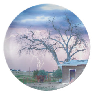 Country Horses Riders On The Storm Party Plates