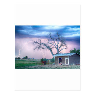 Country Horses Riders On The Storm Post Cards