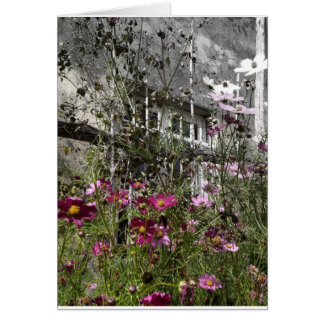 Country house card