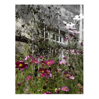 Country house postcard
