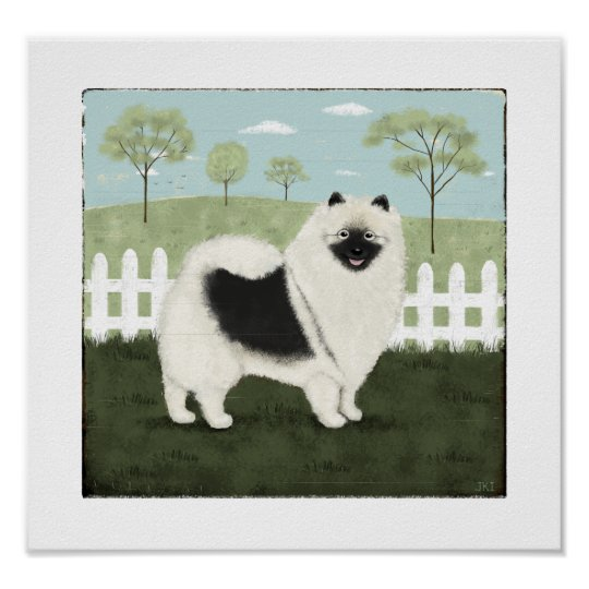Country Keeshond Poster