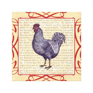 Country Kitchen Elegance Plymouth Rock Rooster Canvas Print