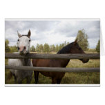 COUNTRY LANDSCAPES GREETING CARD