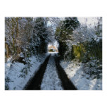 Country Lane In The Snow Poster