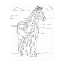 Country Living Horse Postcard
