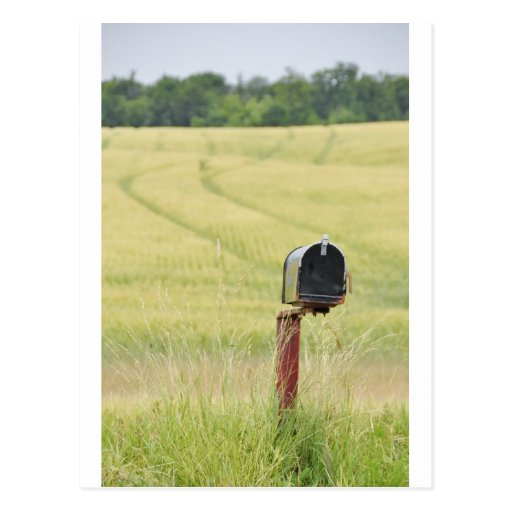 Country Mailbox Postcards
