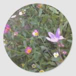 Country Meadow Round Sticker