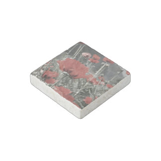 country nature landscape red poppy flower stone magnet