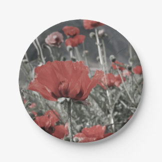 country nature landscape red poppy flower paper plate