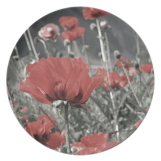 country nature landscape red poppy flower plate