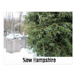 Country NH Winter Postcard