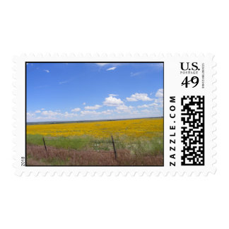 Country pastures in the summer postage stamps